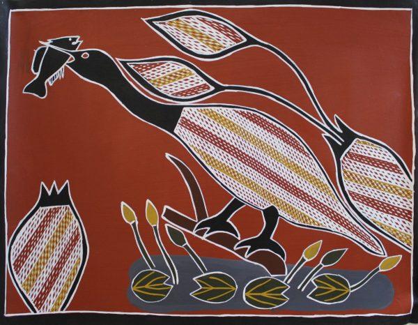 Heron catching tucker